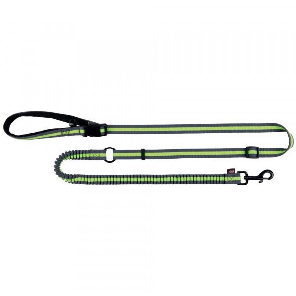 Joggingleine, 1,33–1,80 m/20 mm, grau/grün