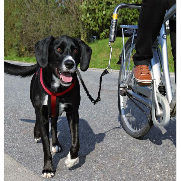 Hunde Biker Set